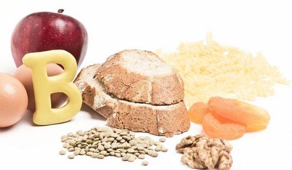 Los hechos básicos de Metabolismo
